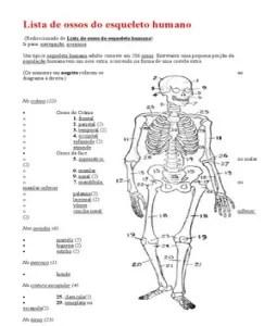 Lista de ossos do esqueleto humano documento