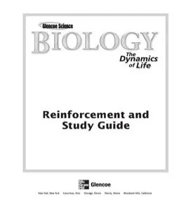 dna and genes reinforcement and study guide answers
