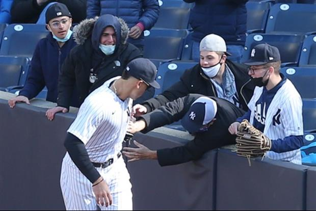 Yankees Fan Tries To Steal Ball From Aaron Judge's Mitt After Catch | TigerDroppings.com
