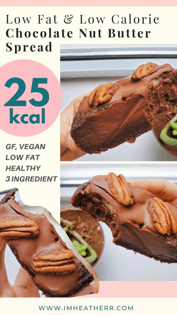 chocolate healthy recipes, 3 ingredient, pb2 recipe, peanut butter powder, low fat and low calorie recipes, 50 calories and gluten free