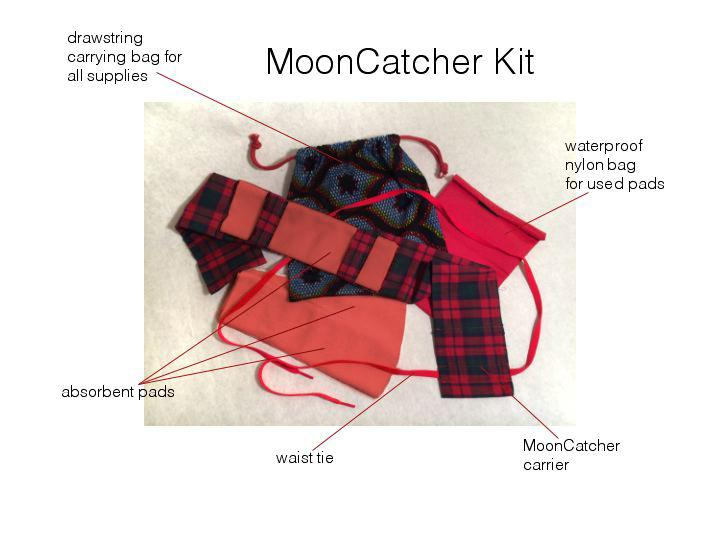 MoonCatcher Kit (see http://www.mooncatcher.org/)