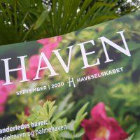 Vores eksotiske palmehave i Haven - Spørgsmål og svar