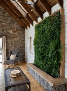 Domowy ogrod w walce ze smog