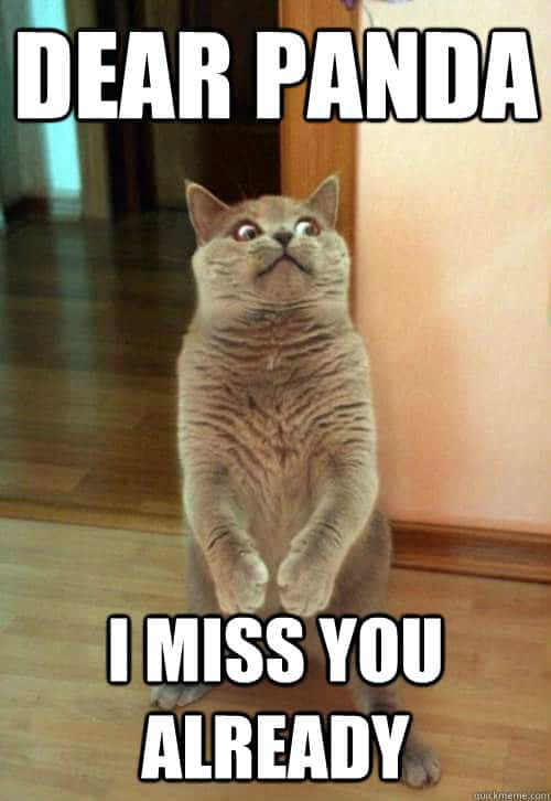 Miss You Already Meme : already, Funny, Memes, Images, Quotes