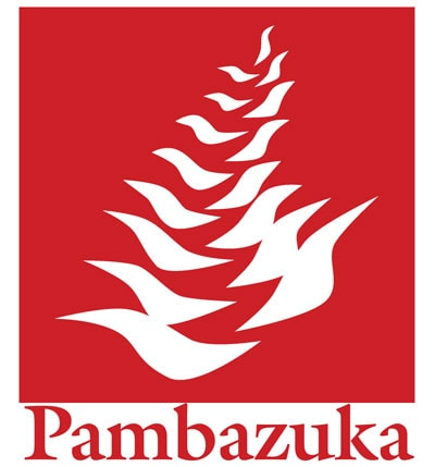 Pambazuka News And Media Coverage Of The African World With Dr. Ama Biney