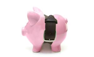 austerity piggy bank
