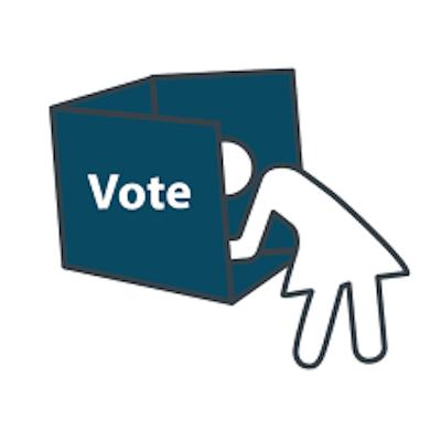 vote and disenfranchisment 2   www.imjussayin.com