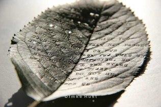 Cherry Leaf Poem (Typed with typewriter)