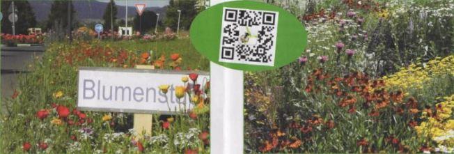 Unsere Gärten - praktisch und gut ?