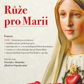 Růže pro Marii