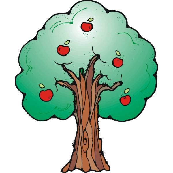 Disegno di Albero di mele a colori per bambini  disegnidacolorareonlinecom