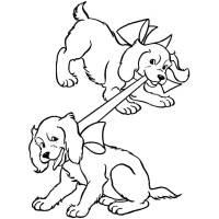 Disegno di Cuccioli di Coker da colorare per bambini ...