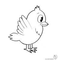 Disegno di Uccello da colorare per bambini