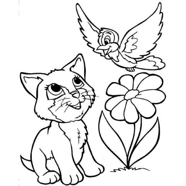 Uccellino Da Colorare E Stampare Disegno Di Uccellino Da Colorare