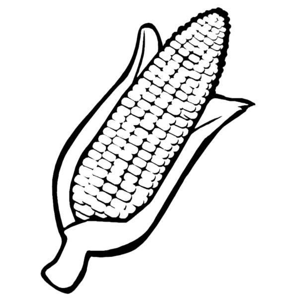 Disegno Corn Pannocchia Alimenti Da Colorare