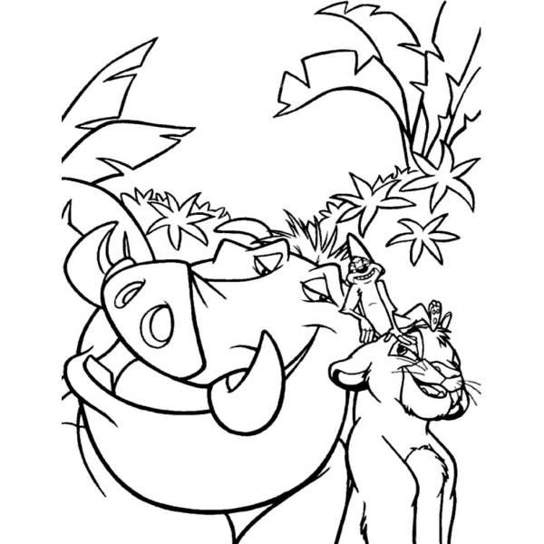 Disegno Di Pumba Re Leone Da Colorare Per Bambini
