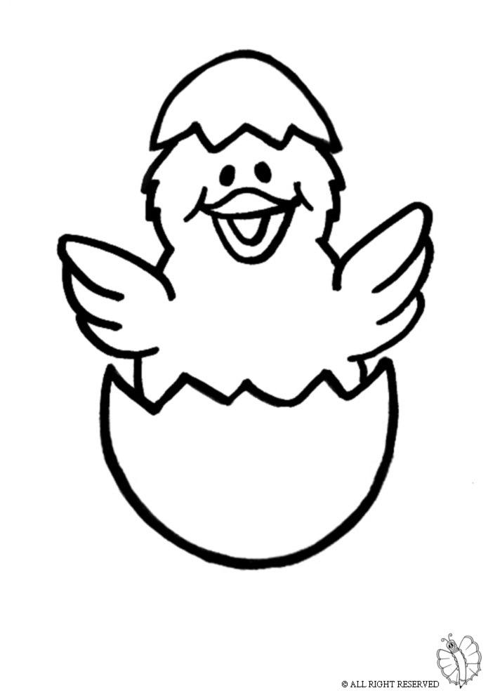 Stampa disegno di Pulcino da colorare