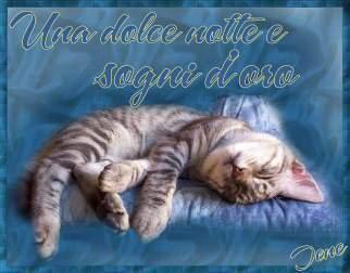 Immagini Buonanotte romantiche  Immagini Buonanotte