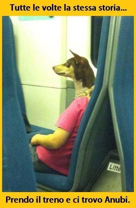 Anubi in treno
