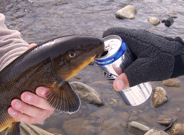 Recreational fishing linked to severe alcoholism for Too cool fishing
