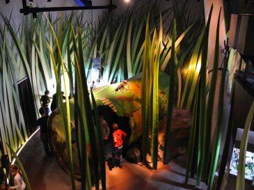 Bremerhaven - Sardiniens Insektenwelt im Klimahaus