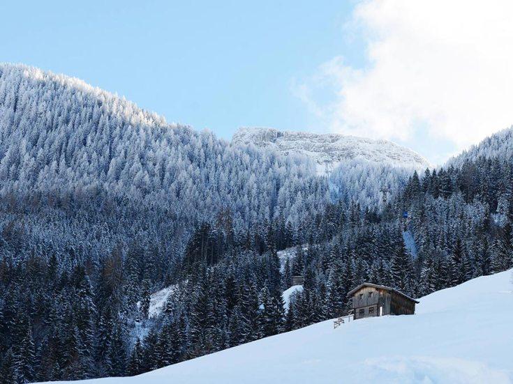 Winterurlaub-Osterreich-Almhuette