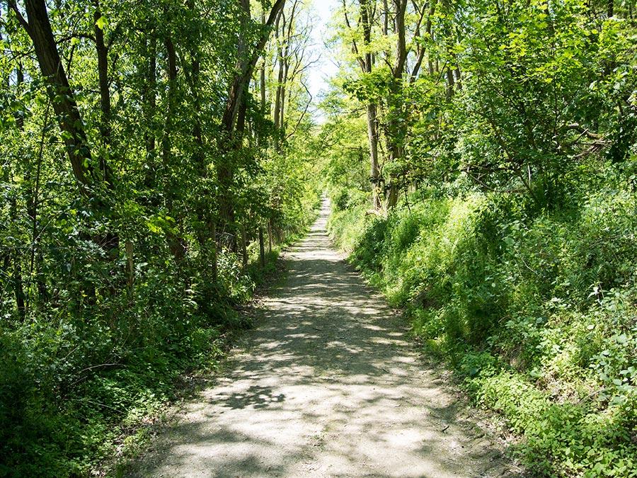 Mosel Kurzurlaub: Wandern nach Bernkastel