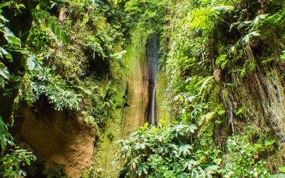 8 Reisetipps für São Miguel (Azoren) [Werbung]