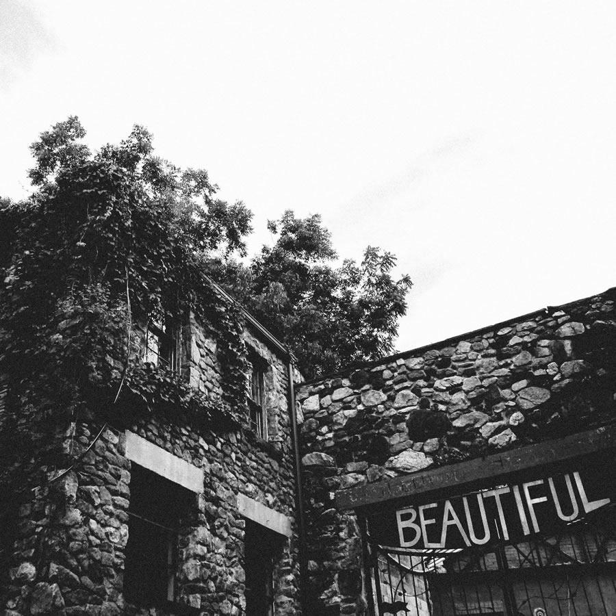 Trent Rice - Beautiful