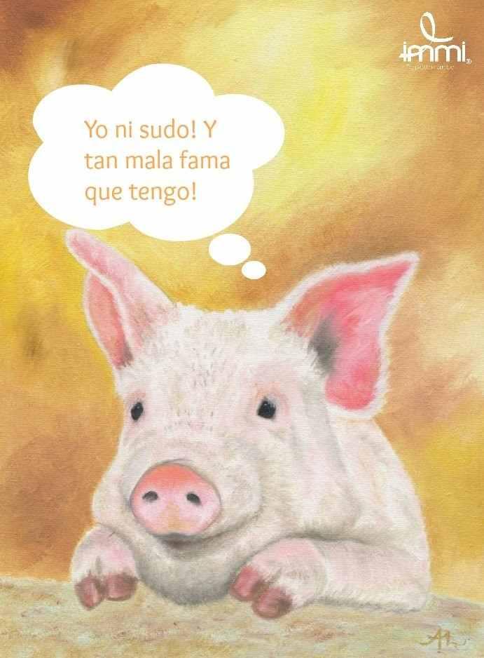 En este momento estás viendo Los cerdos no sudan