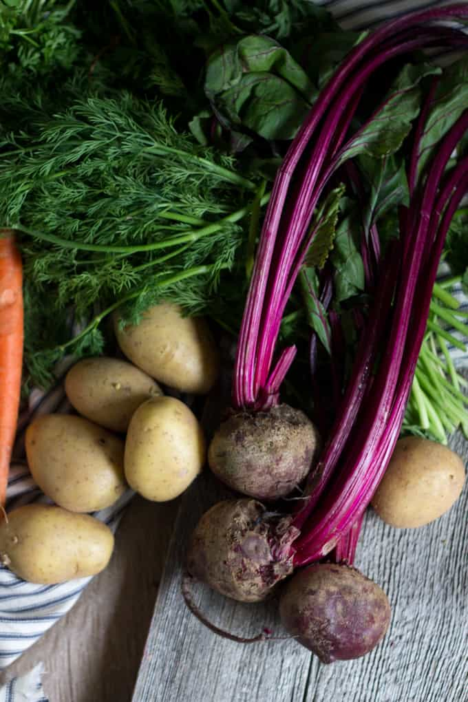 Free veggie dating ukraine