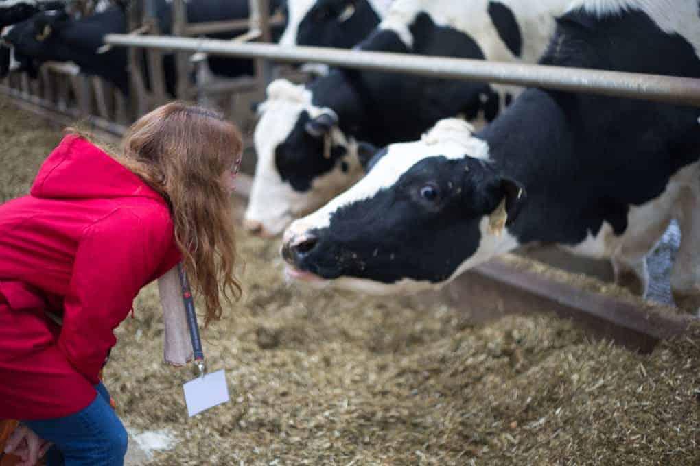 Ontario Farm & Food Care food tour