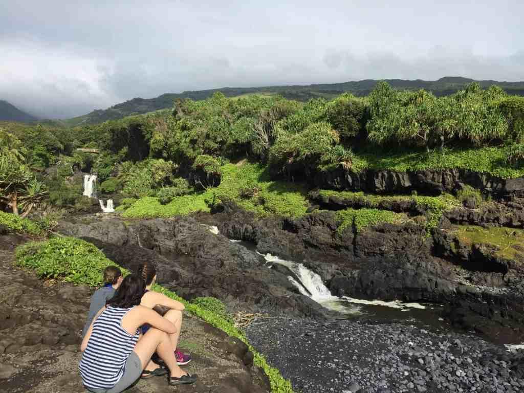 Maui, Day II + the perfect cup of Maui Estate Coffee