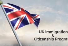 Immigration to UK by Investment