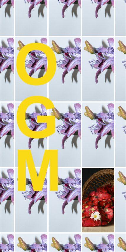 CARTON-RECTO-OGM-RVB-copie