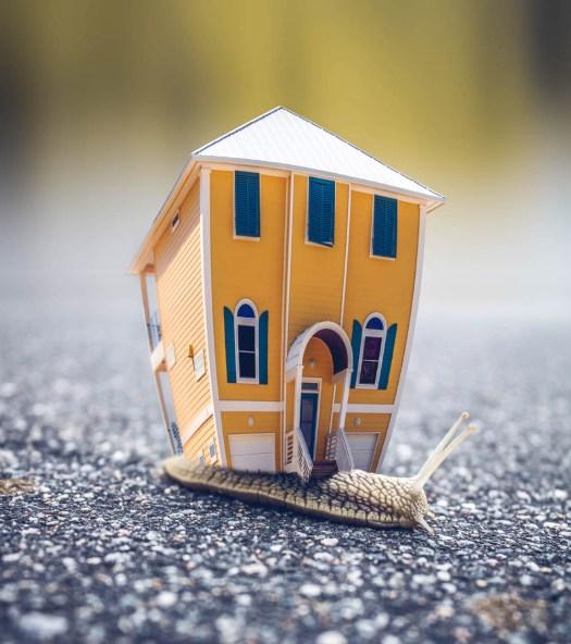 Immobilienmakler Mettmann