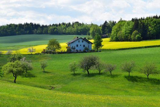 Immobilie verkaufen Mettmann Metzkausen