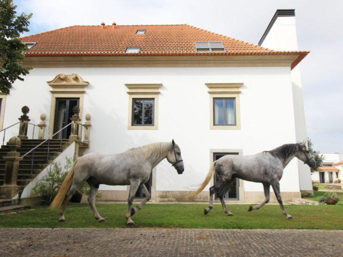Portugal-domaine-gîte
