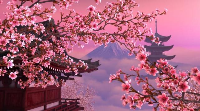 JAPON: QUELLE RETRAITE POUR LES CENTENAIRES?