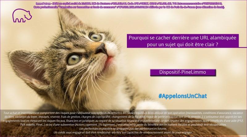 ImmoPotam-appelons-un-chat-Dispositif-Pinel-immo-immobilier-maison-appartement-neuf-vefa-logement-ancien-gestion-patrimoine-1p
