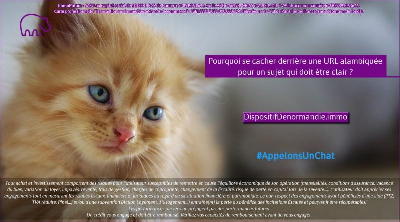 ImmoPotam-appelons-un-chat-DispositifDenormandie-immo-immobilier-maison-appartement-neuf-vefa-logement-ancien-gestion-patrimoine