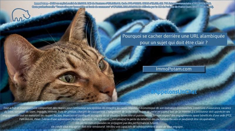 ImmoPotam-appelons-un-chat-ImmoPotam-com-immobilier-maison-appartement-neuf-vefa-logement-ancien-gestion-patrimoine-1p-2p-3p-4p-5p