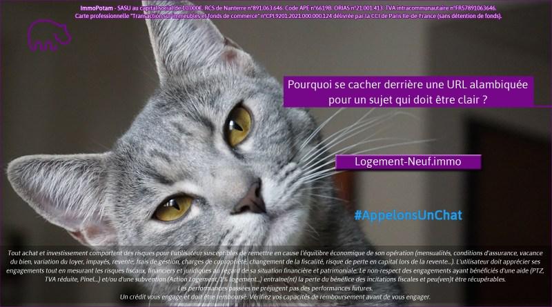 ImmoPotam-appelons-un-chat-Logement-Neuf-immo-immobilier-maison-appartement-neuf-vefa-logement-ancien-gestion-patrimoine-1p-2p-3p