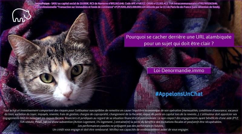ImmoPotam-appelons-un-chat-Loi-Denormandie-immo-immobilier-maison-appartement-neuf-vefa-logement-ancien-gestion-patrimoine-1p
