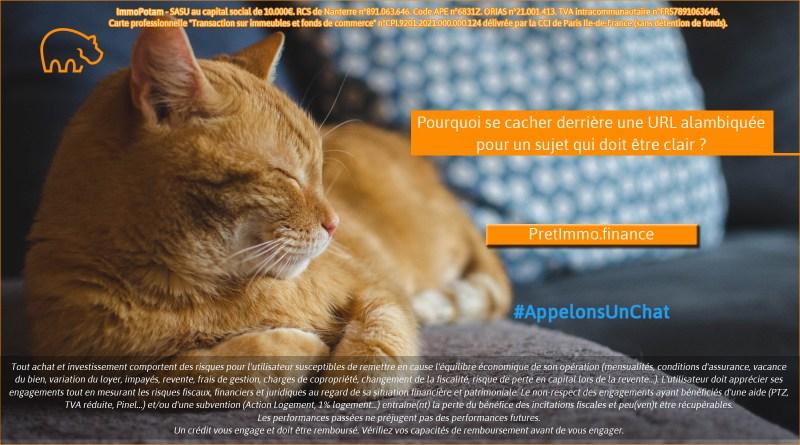 ImmoPotam-appelons-un-chat-PretImmo-finance-immobilier-maison-appartement-neuf-vefa-logement-ancien-gestion-patrimoine-1p-2p