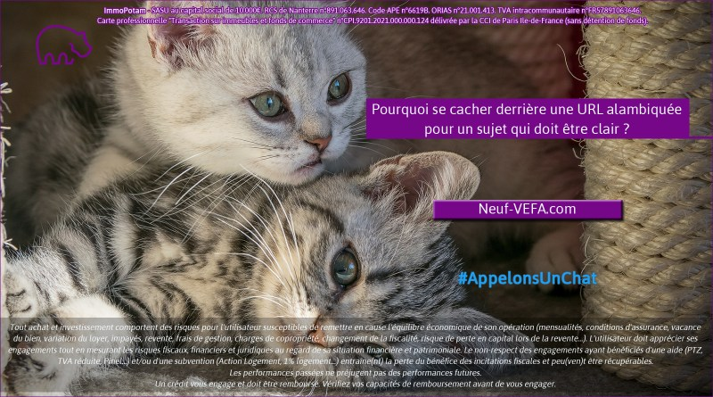 ImmoPotam-appelons-un-chat-Neuf-VEFA-com-immobilier-maison-appartement-neuf-vefa-logement-ancien-gestion-patrimoine-1p-2p-3p-4p-5p