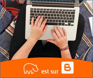 Bannière Blogger - 300x250 px - 10092021-2