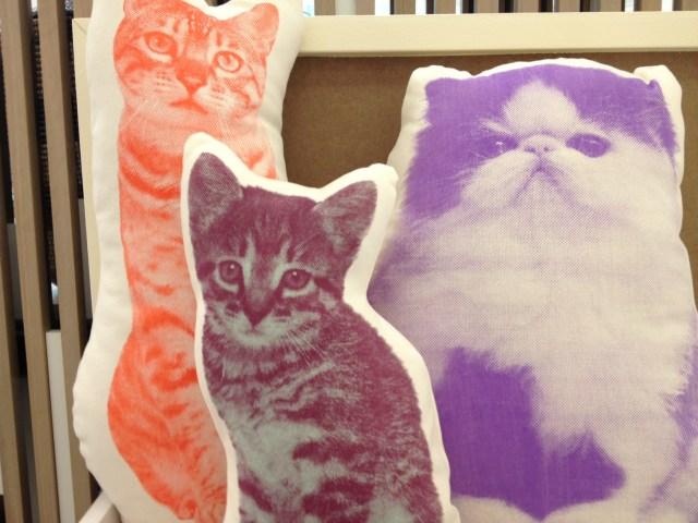 Ross Menuez Fauna Pillows
