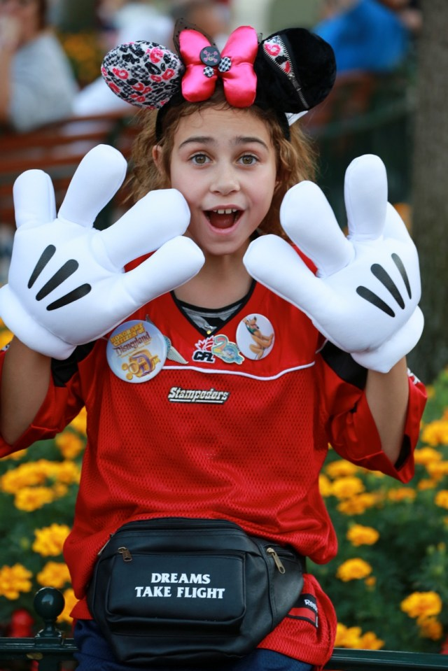 Dreams Take Flight Disney Charity Mickey