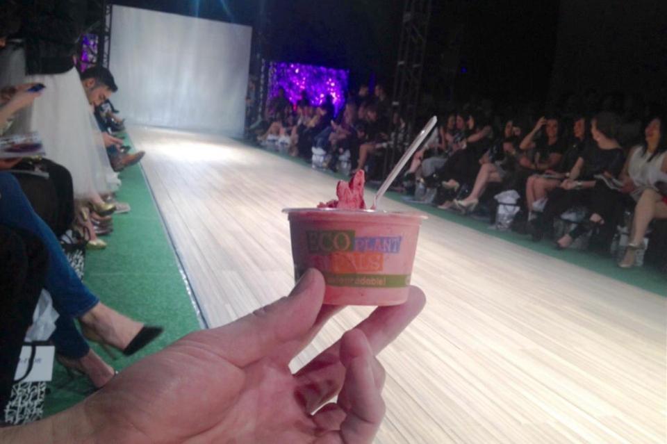PARK show Fiasco Gelato (Large)